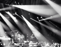 Phish (Black & White)